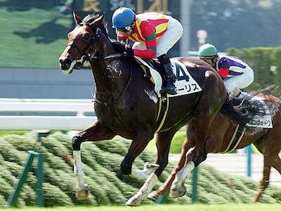 安田記念、年度代表馬モーリスの鞍上を考えよう!