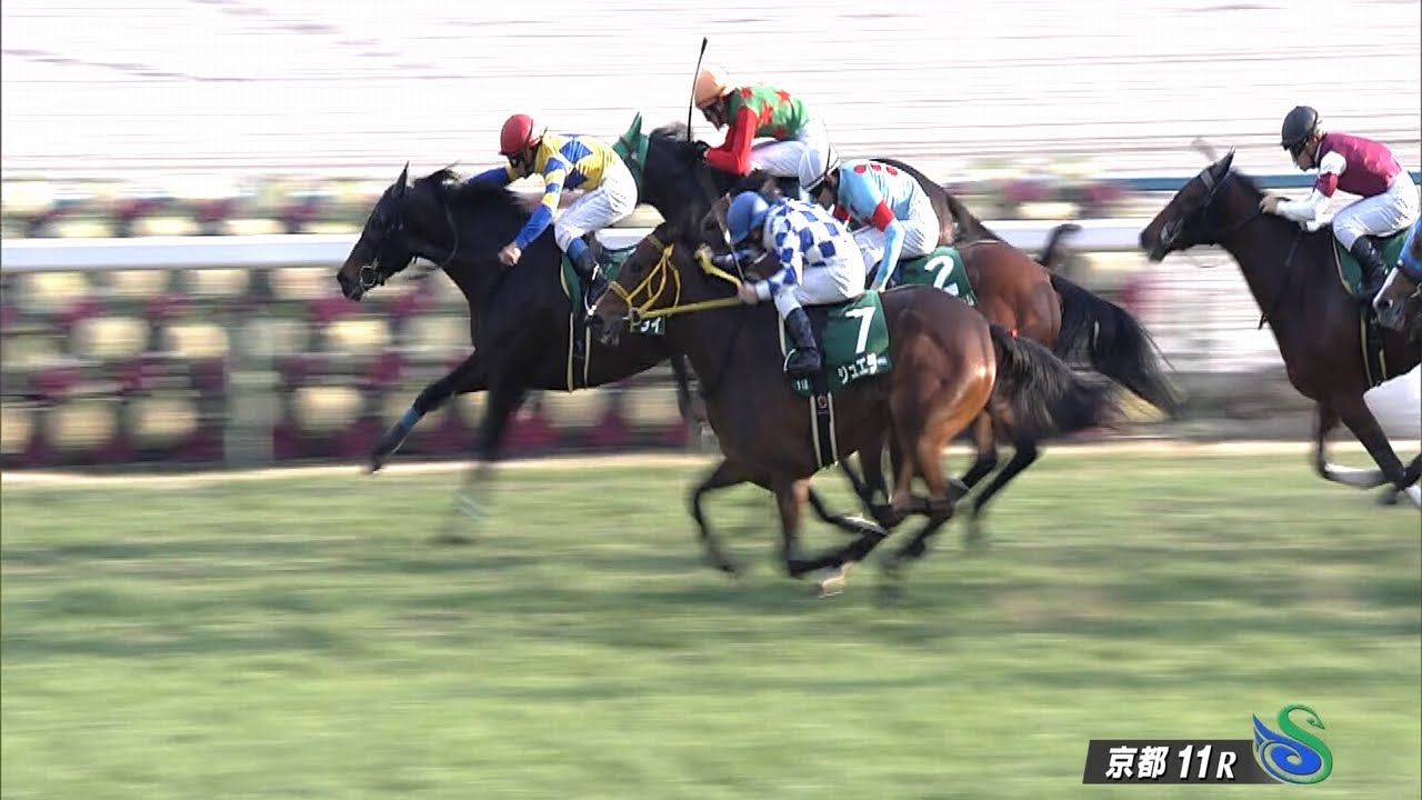 ジュエラー、左後第2指骨骨折のため現役を引退…今後は北海道千歳市の社台ファームで繁殖牝馬になる予定