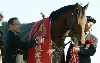 エアハリファが引退…今後は乗馬となる予定