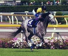 日本史上最強のダート馬って誰なの