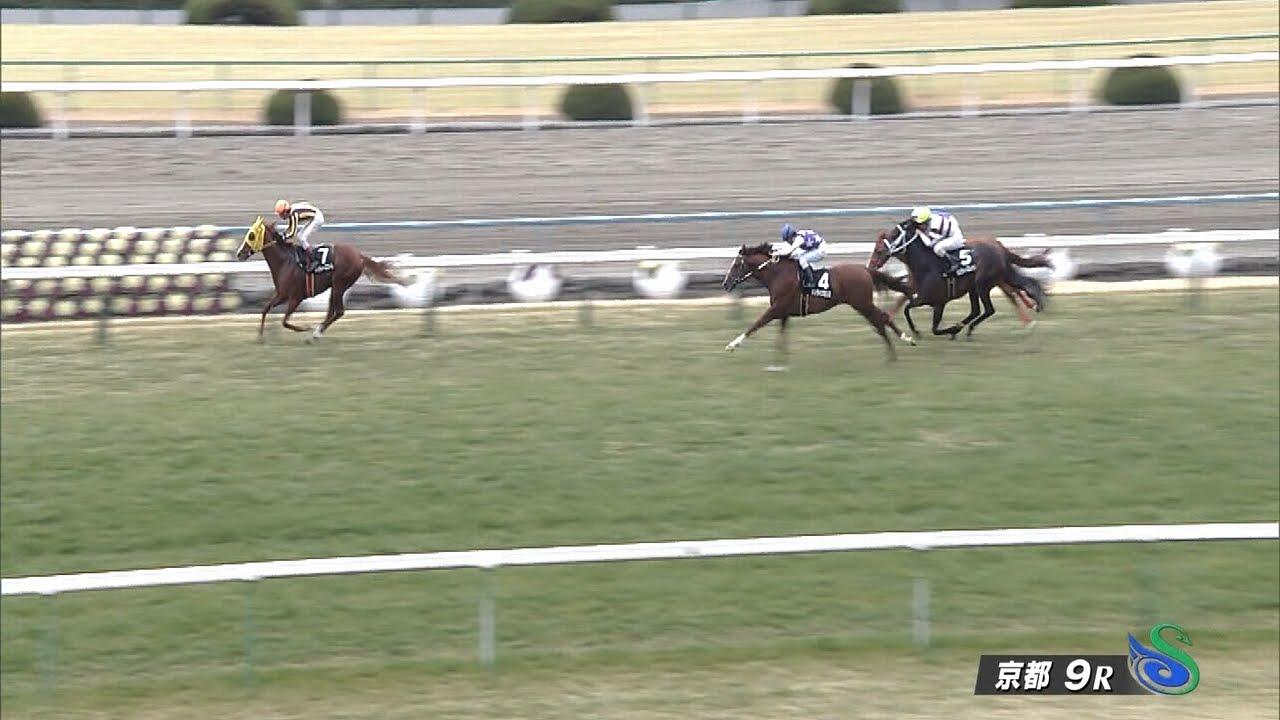 京都9Rの勝ち馬以外の騎手引退しろよwwwwwww