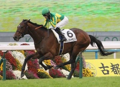 栗東競馬関係者「サトノダイヤモンドはマカヒキより強い」