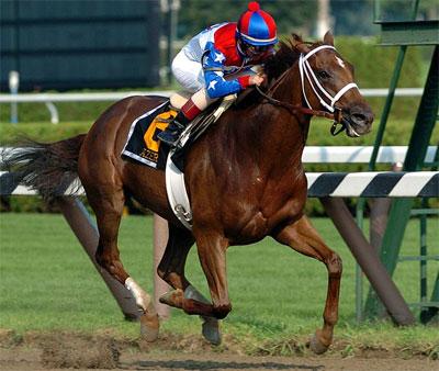セレクト最高額2憶五千万、アゼリの2014の馬名がアドマイヤエスパーに決定!