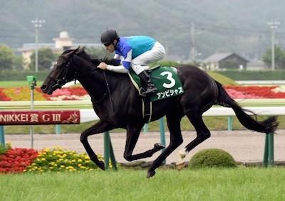 中山記念2着アンビシャス、横山典弘騎手で大阪杯へ!