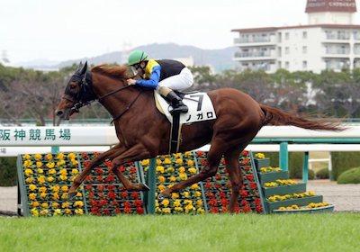ノガロ陣営「松若ではこの馬を動かせない。戸崎なら皐月賞の権利(2着以内)は取れる」