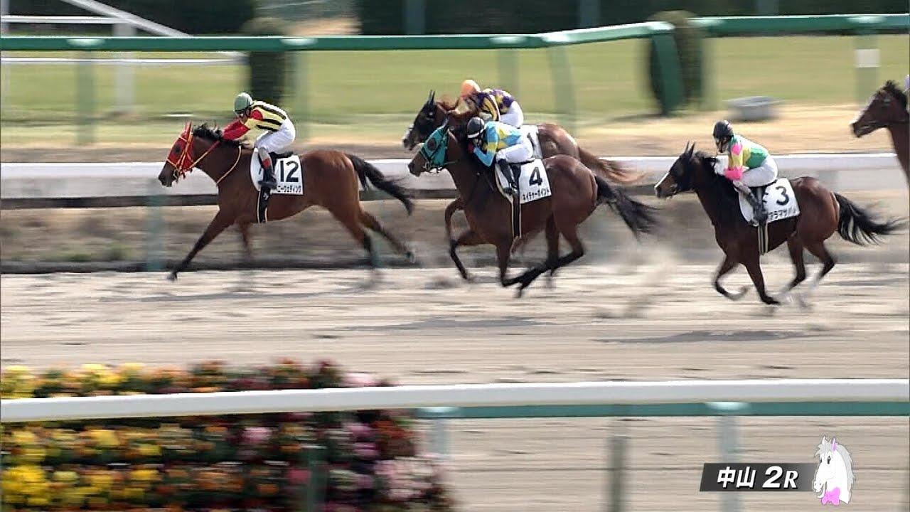 中山2Rで藤田菜七子騎手が追い込んで来た件について