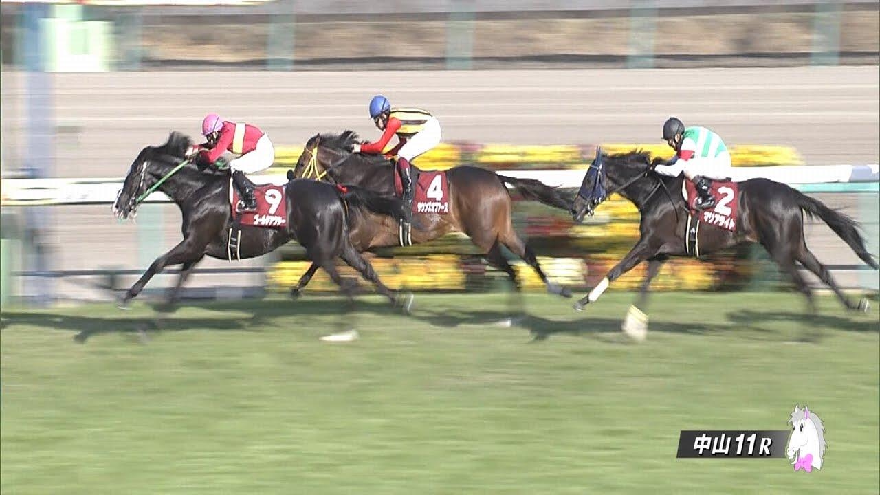 日経賞におけるルメール騎手の騎乗に関して