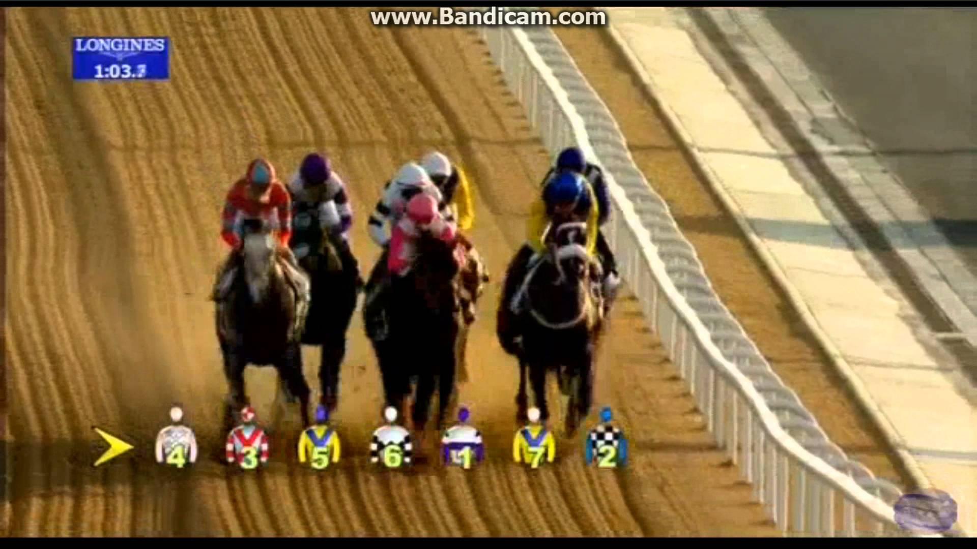 武豊騎手騎乗のラニ、UAEダービーを勝利!