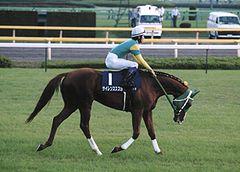 1800~2000で本格化サイレンススズカを差せる日本馬は今までに存在しない