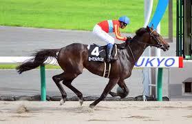 ローマンレジェンドが引退…今後は誘導馬へ