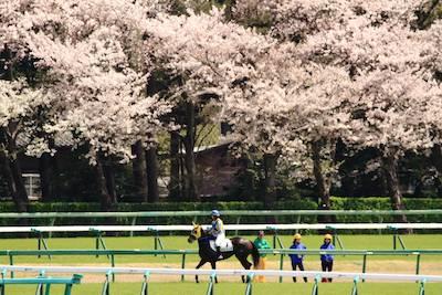 これで明日の一面は藤田菜七子ちゃん初勝利>>>>>桜花賞馬になる件