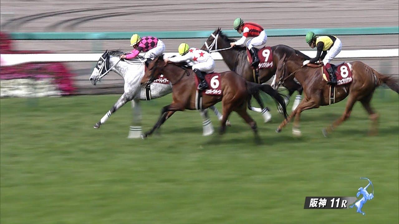 スマートレイアー、東京大賞典でダート初挑戦 鞍上は引き続き武豊騎手
