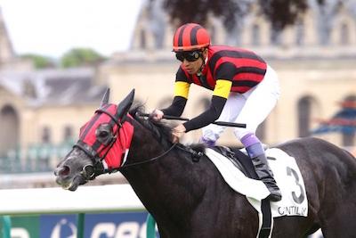 エイシンヒカリ、坂口調教師「逃げてこその馬」 武豊騎手「逃げなきゃダメという馬ではない」