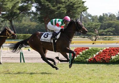 そこそこ強い牝馬ことルージュバックさん、エリザベス女王杯4着、ヴィクトリアマイル5着