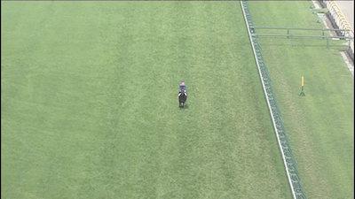 横山典弘騎手は本気で競馬やっているのか