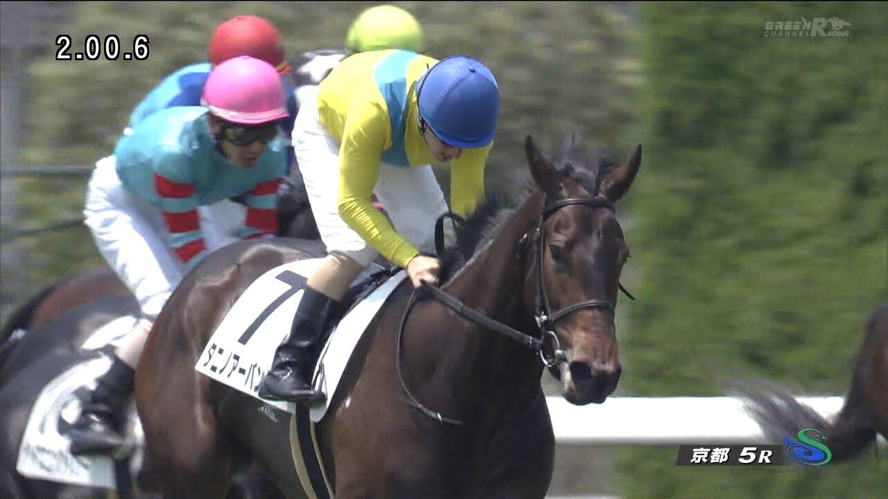 ウオッカの娘タニノアーバンシー、初勝利おめでとう!