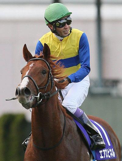 エアスピネルは再来週に帰厩、神戸新聞杯から菊花賞へ