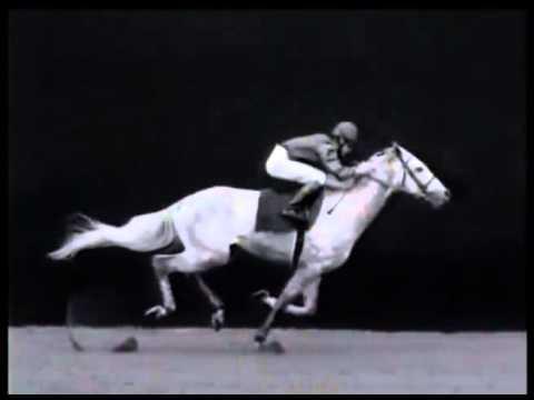 騎乗フォームが1番綺麗な騎手といえば?