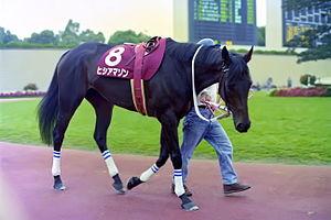 牝馬でも牡馬に通用すると思わせた最初の牝馬ってヒシアマゾンだよな?
