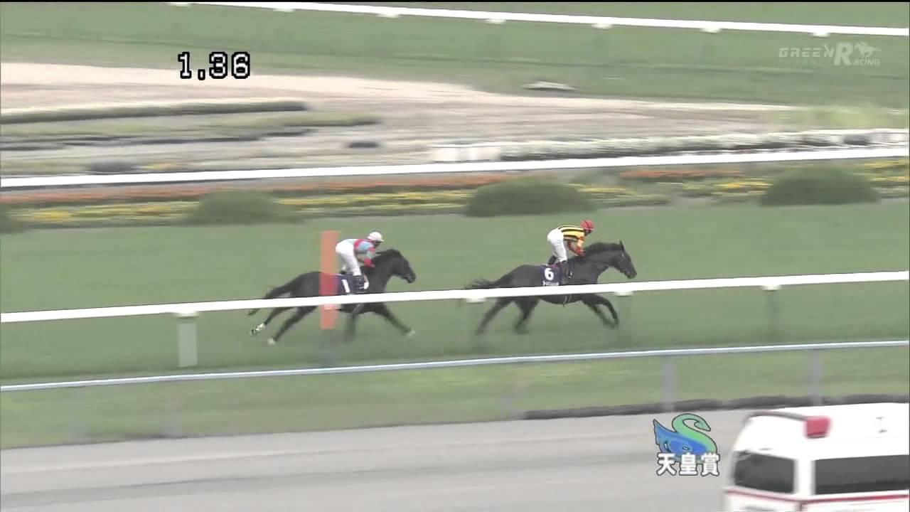 ビートブラックの天皇賞でビートブラックに勝てる馬