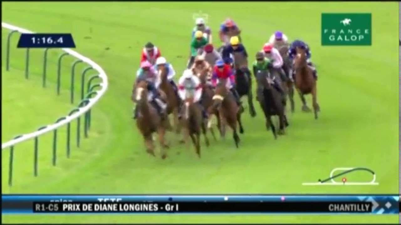 3歳牝馬のラクレソニエール号が8戦全勝!