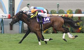 近年の秋華賞馬、古馬になっても重賞を勝てる名馬しかいない