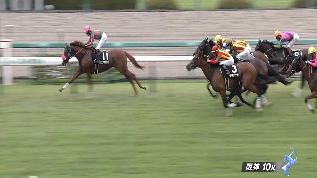 ミエノサクシード快勝!次走は秋華賞を視野!川島騎手「これほど化けた馬は初めて」