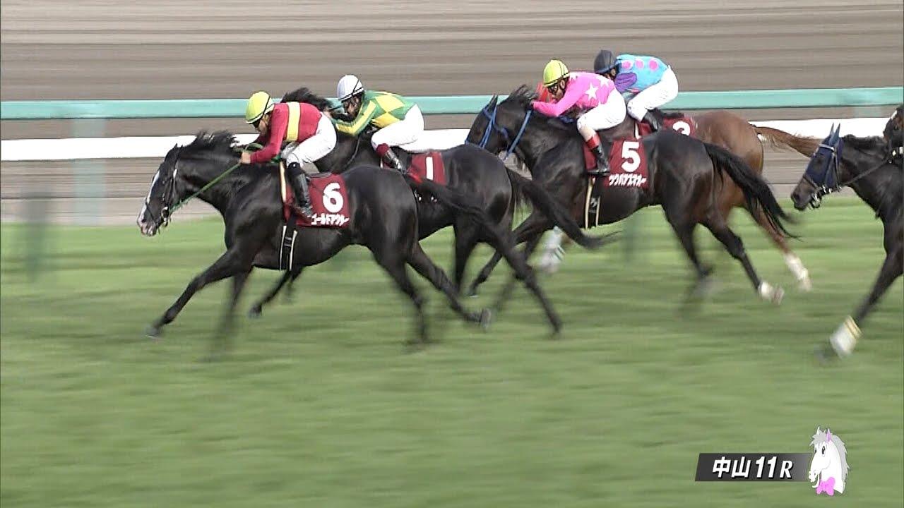 内田博幸騎手「ワンアンドオンリーの走り方に前向きさがない」
