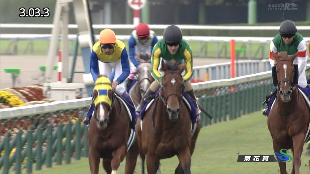 サトノダイヤモンドが今引退したら歴代でどのくらいの馬に相当するの?