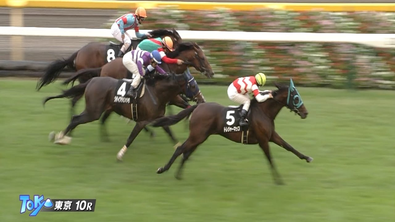 内田博幸騎手、ゴールドシップの弟トレジャーマップで通算1000勝達成!