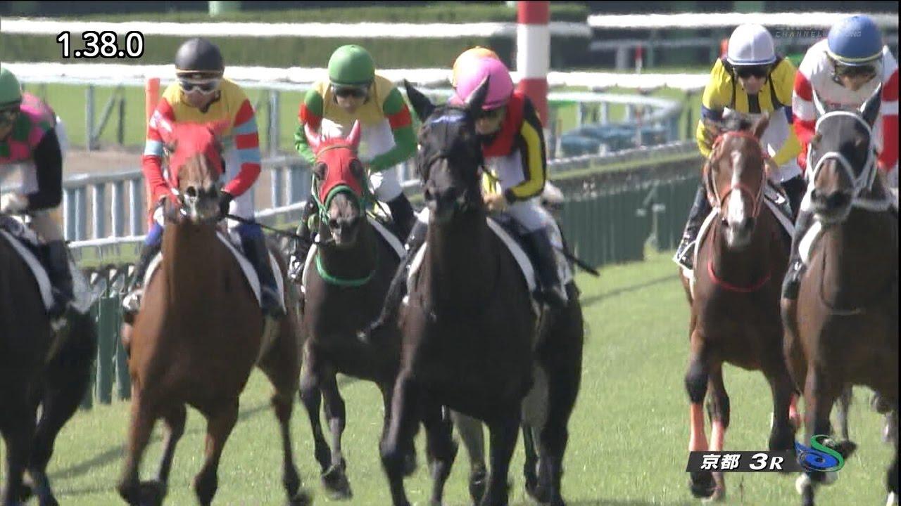 サトノダイヤモンドの半妹リナーテ、1番人気に応え勝利!川田騎手「もっと良くなる」