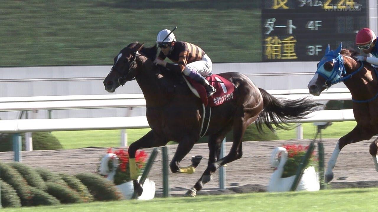 京都大賞典におけるデムーロ騎手の騎乗について