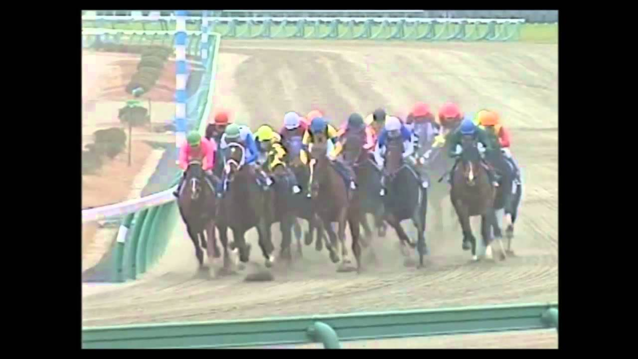 初めて騎手の大事さを思い知らされたレースや馬は?