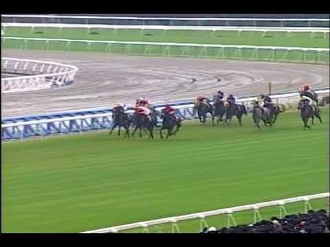 1994年菊花賞ナリタブライアンに勝てそうな馬