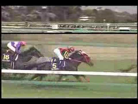 日本ダービーで単勝オッズが1倍台になった馬をご覧ください