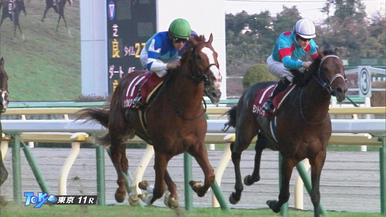 シュヴァルグラン、引き続き鞍上福永騎手で次走ジャパンカップから有馬記念へ!