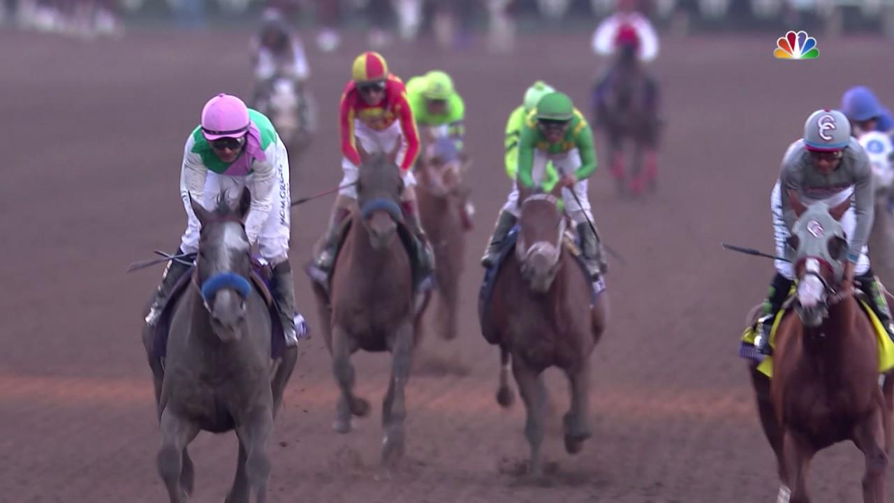3歳馬アロゲート、カリフォルニアクロームとの一騎打ちを制しブリーダーズカップクラシックを勝利!