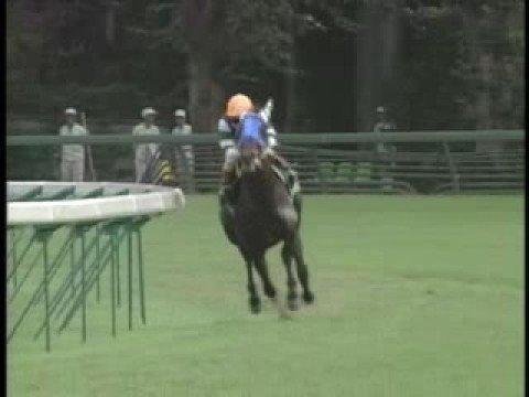 4角先頭の馬の単回収率が100%越えるらしいwwwww