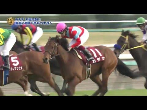 現役馬の中で一番「え、オマエ重賞勝ってるの?」って思われてる馬