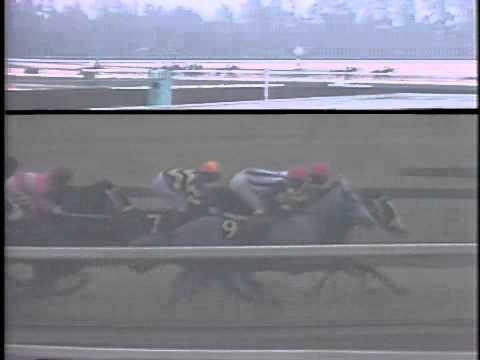 牝馬3冠よく出るのに牡馬3冠なかなか出ないのなんで?