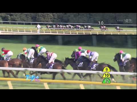2013年NHKマイルCの優勝馬マイネルホウオウが競走馬登録を抹消…今後はJRA日高育成牧場で乗馬になる予定