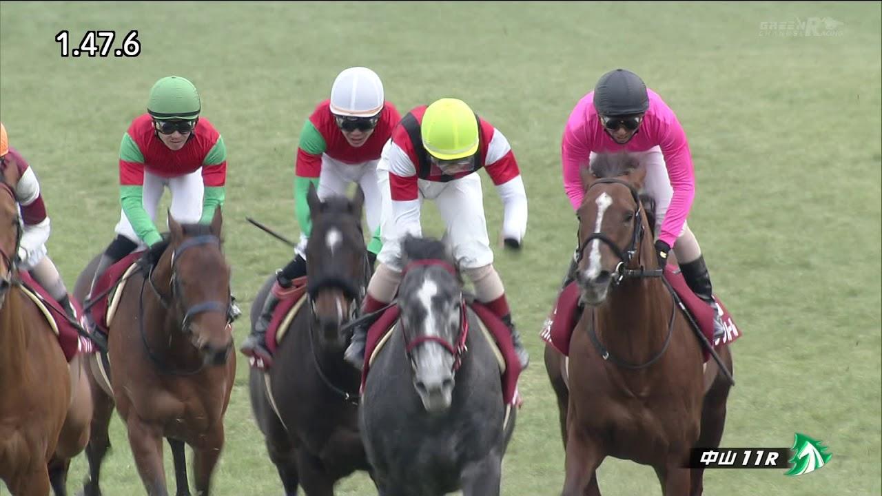 ディサイファ6着…田中勝春騎手「武豊のようにはいかなかった」