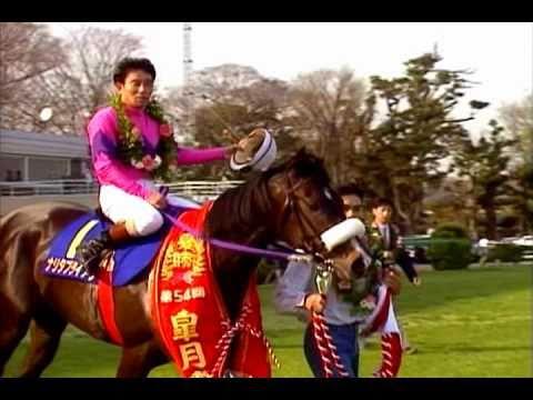 シャドーロールで強かった馬ってナリタブライアンくらいだよね