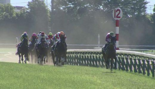 6着サトノワルキューレ Mデムーロ騎手「スタート出たけど、全然伸びてくれなかった。わからないね」