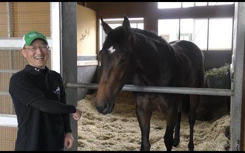 【神馬】サートゥルナーリアの馬体が美しすぎる