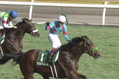 大竹正博調教師「ブラストワンピースは有馬記念を使える状態だった」
