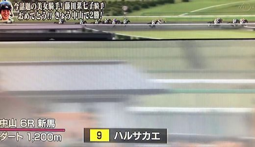藤田菜七子騎手、逃げ差し自在の立ち回りで騎乗機会2連勝