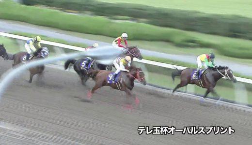 戸崎圭太さん内田博幸さん、とんでもないゴミ騎乗を見せつける