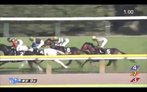 パゴの子供なのに東京の高速馬場で強いクロノジェネシスって化け物なんじゃないの?
