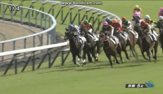 メロディーレーン、336キロで出走 2歳出走馬のJRA最少馬体重記録を更新